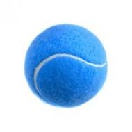Apollo Play Tennis Ball - Blue