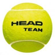 HEAD Team Coaching Tennis Ball