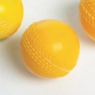 Oz Cricket Ball