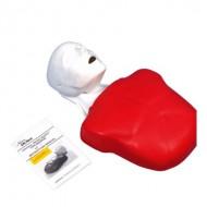 Basic Buddy CPR Manikin