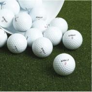 School Golf Balls (x12)